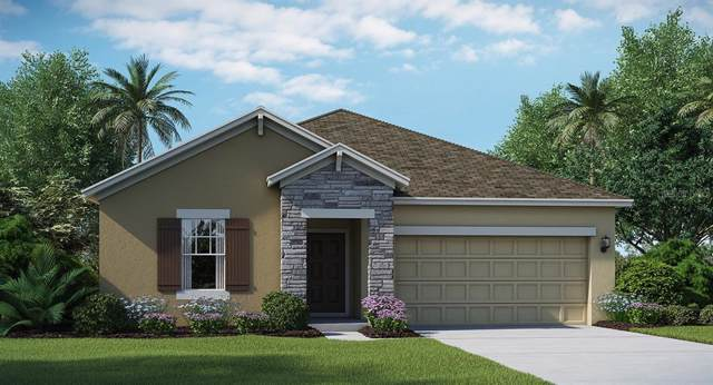 4396 Seven Canyons Drive, Kissimmee, FL 34746 (MLS #T3199075) :: Burwell Real Estate
