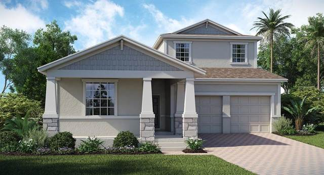 2279 Cathedral Rock Drive, Kissimmee, FL 34746 (MLS #T3199079) :: Rabell Realty Group