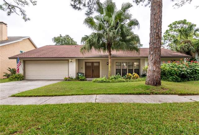 4523 Pine Hollow Drive, Tampa, FL 33624 (MLS #T3199083) :: The Nathan Bangs Group