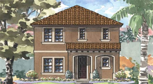 12962 Wildgrass Trail, Odessa, FL 33556 (MLS #T3199177) :: Premium Properties Real Estate Services