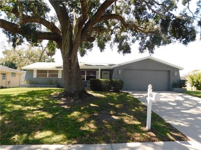 7855 Cherrytree Lane, New Port Richey, FL 34653 (MLS #T3199230) :: Team 54
