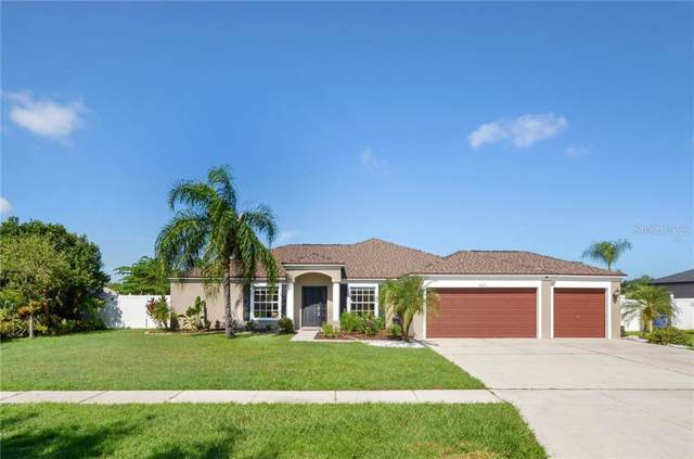 6625 Clair Shore Drive, Apollo Beach, FL 33572 (MLS #T3199234) :: Bustamante Real Estate
