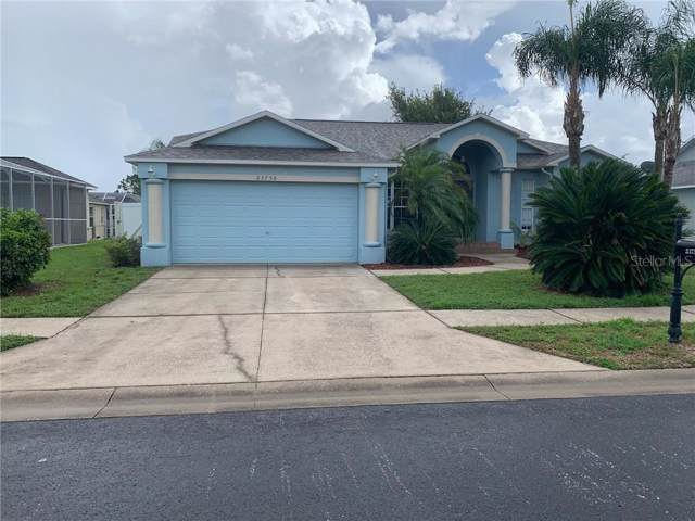 23750 Peace Pipe Court, Lutz, FL 33559 (MLS #T3199263) :: Team Bohannon Keller Williams, Tampa Properties
