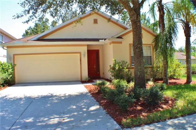 10852 Tree Cactus Loop, Land O Lakes, FL 34638 (MLS #T3199266) :: Rabell Realty Group