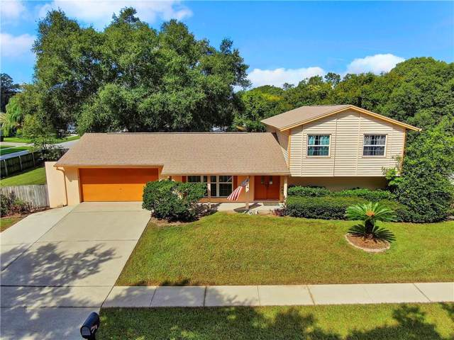 3503 Cleo Lane, Valrico, FL 33596 (MLS #T3199291) :: Burwell Real Estate