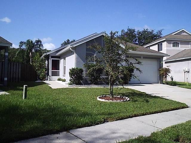 Address Not Published, Lutz, FL 33559 (MLS #T3199302) :: Burwell Real Estate