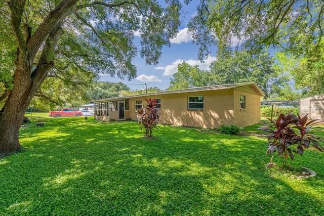 312 Papaya Drive, Tampa, FL 33619 (MLS #T3199330) :: Team Bohannon Keller Williams, Tampa Properties