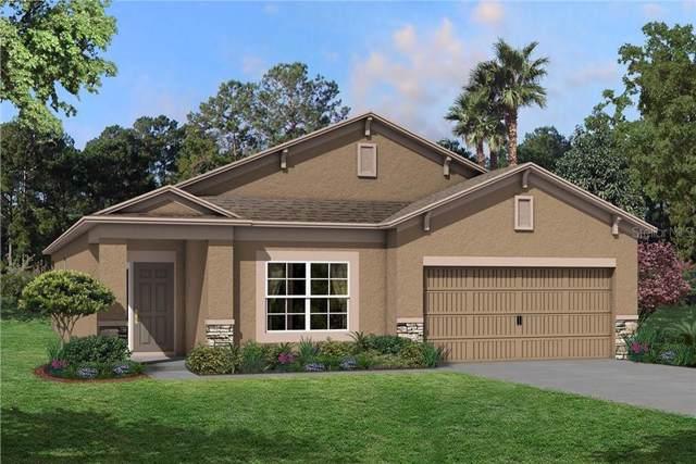 11410 Alachua Creek Lane #1029, Riverview, FL 33579 (MLS #T3199377) :: Burwell Real Estate
