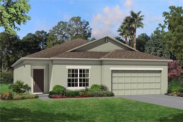 11409 Alachua Creek Lane #1042, Riverview, FL 33579 (MLS #T3199379) :: Burwell Real Estate