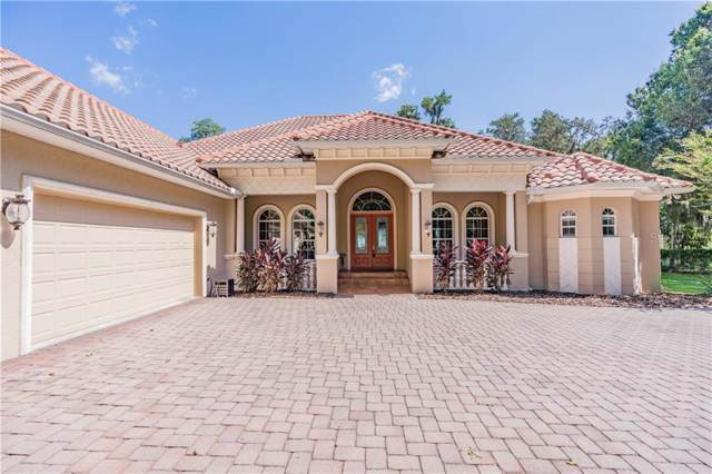 13842 Plainview Road, Odessa, FL 33556 (MLS #T3199383) :: Rabell Realty Group