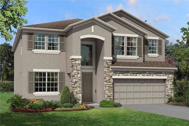 11407 Alachua Creek Lane #1041, Riverview, FL 33579 (MLS #T3199394) :: Burwell Real Estate