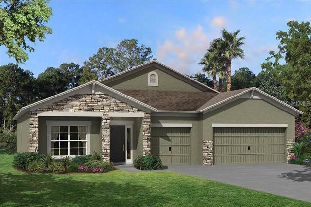 18553 Malinche Loop #709, Spring Hill, FL 34610 (MLS #T3199395) :: Rabell Realty Group