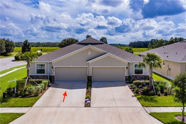 7916 Timberview Loop, Wesley Chapel, FL 33545 (MLS #T3199435) :: RE/MAX Realtec Group