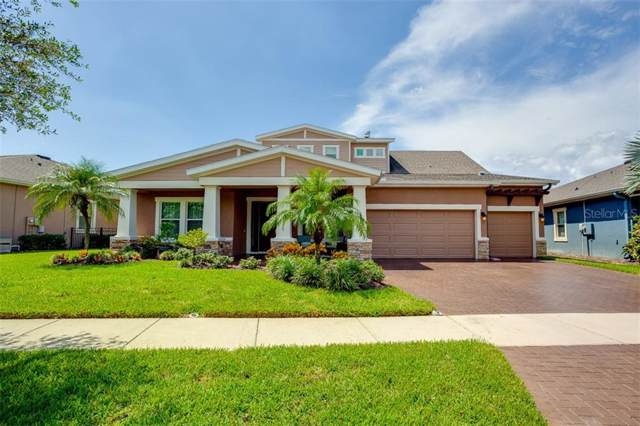 6624 Park Strand Drive, Apollo Beach, FL 33572 (MLS #T3199455) :: The Light Team
