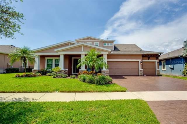 6624 Park Strand Drive, Apollo Beach, FL 33572 (MLS #T3199455) :: Griffin Group