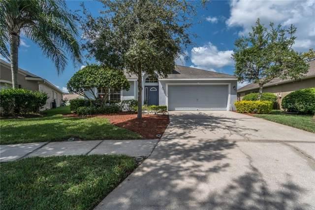 22741 Hawk Hill Loop, Land O Lakes, FL 34639 (MLS #T3199463) :: Premium Properties Real Estate Services