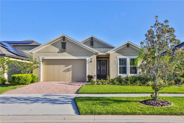 10528 Cardera Drive, Riverview, FL 33578 (MLS #T3199505) :: The Brenda Wade Team