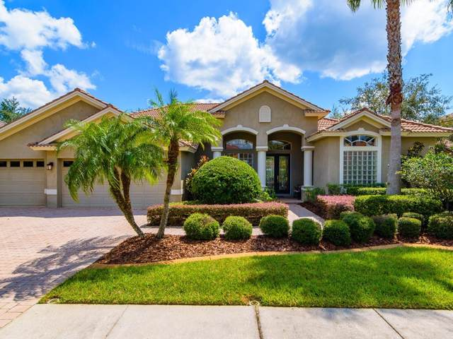 10811 Barbados Isle Drive, Tampa, FL 33647 (MLS #T3199506) :: Team Bohannon Keller Williams, Tampa Properties