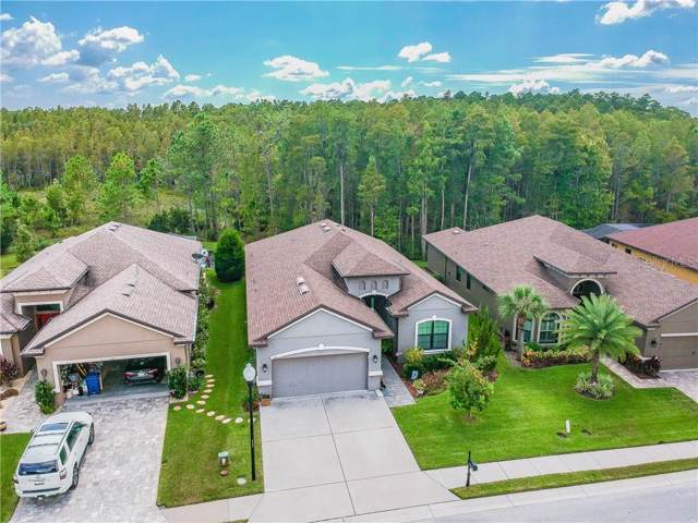 1031 Ketzal Drive, Trinity, FL 34655 (MLS #T3199512) :: Griffin Group