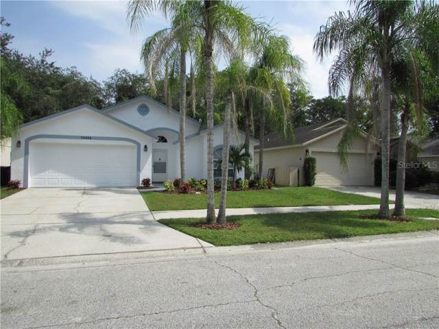 13524 Bellingham Drive, Tampa, FL 33625 (MLS #T3199520) :: Cartwright Realty