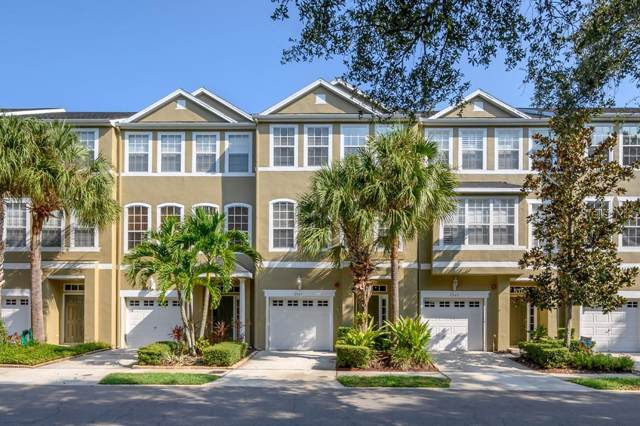 2945 Pointeview Drive, Tampa, FL 33611 (MLS #T3199525) :: Alpha Equity Team