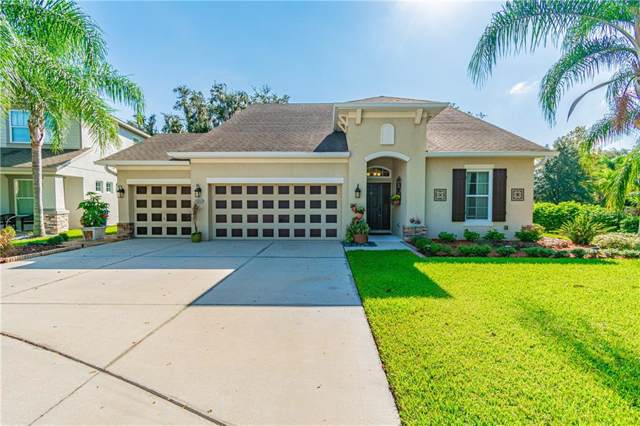 2636 Red Fern Drive, Dover, FL 33527 (MLS #T3199526) :: The Duncan Duo Team