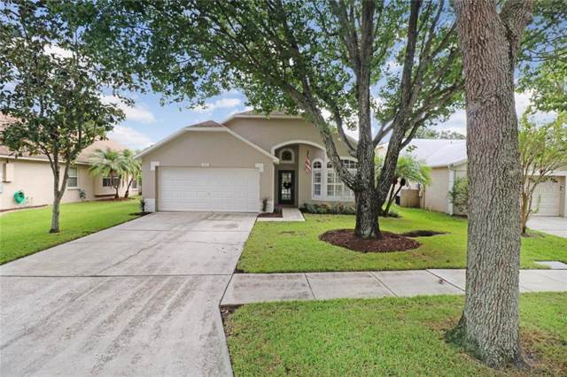 10311 Springrose Drive, Tampa, FL 33626 (MLS #T3199595) :: Griffin Group