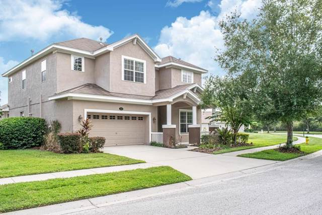 5116 Pheasant Woods Drive, Lutz, FL 33558 (MLS #T3199610) :: Burwell Real Estate