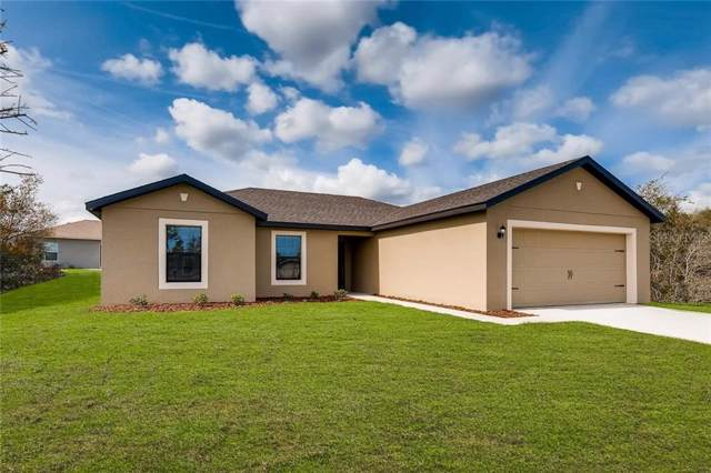 1180 Moyle Way, Mascotte, FL 34753 (MLS #T3199669) :: Burwell Real Estate
