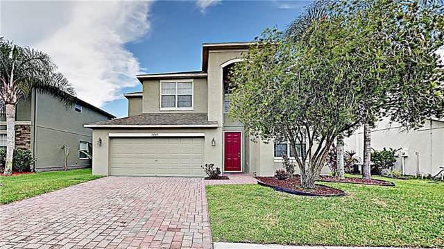 1445 Impatiens Court, Trinity, FL 34655 (MLS #T3199777) :: Premier Home Experts