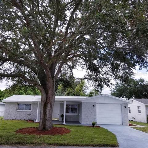 3524 Nixon Road, Holiday, FL 34691 (MLS #T3199815) :: Griffin Group