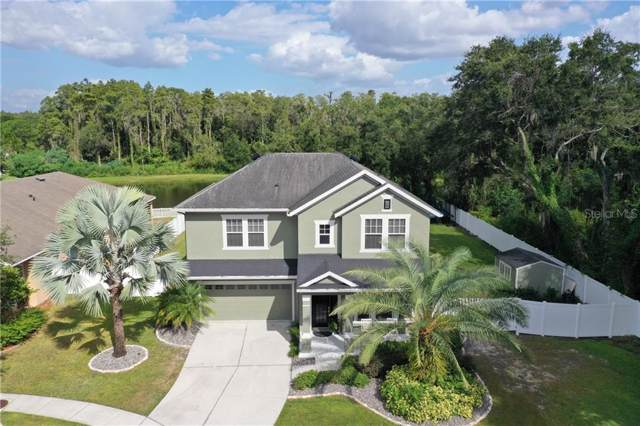 13303 Tiger Lilly Lane, Tampa, FL 33625 (MLS #T3199831) :: Cartwright Realty