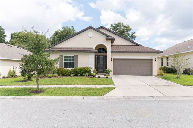 13332 Meadow Golf Avenue, Hudson, FL 34669 (MLS #T3199893) :: Team Pepka