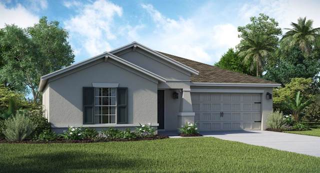 208 Bergamot Loop, Davenport, FL 33837 (MLS #T3199921) :: Gate Arty & the Group - Keller Williams Realty Smart