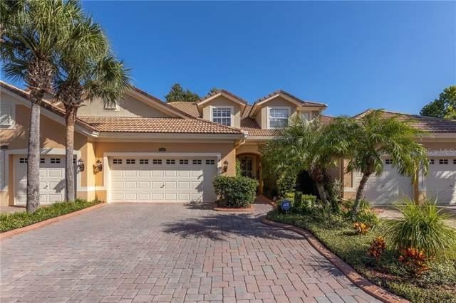7313 Gaberia Road, Trinity, FL 34655 (MLS #T3199961) :: Premier Home Experts