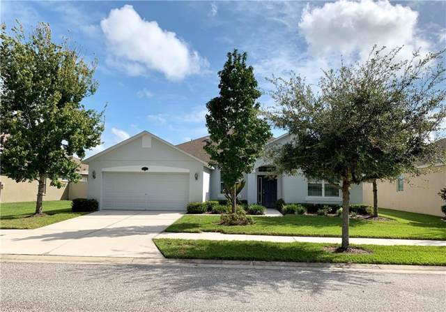 20113 Natures Hike Way, Tampa, FL 33647 (MLS #T3199976) :: Lovitch Realty Group, LLC