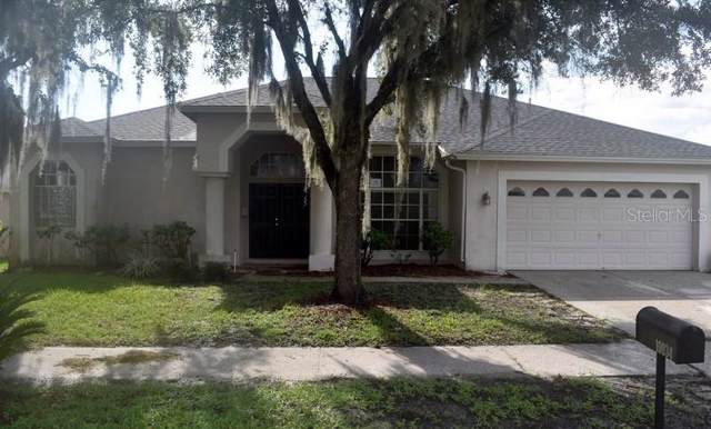 10034 Cypress Shadow Avenue, Tampa, FL 33647 (MLS #T3199985) :: Cartwright Realty
