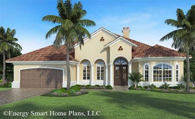 4013 Cove Lake Place, Land O Lakes, FL 34639 (MLS #T3200149) :: The Nathan Bangs Group