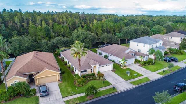 27513 Edenfield Drive, Wesley Chapel, FL 33544 (MLS #T3200184) :: Ideal Florida Real Estate