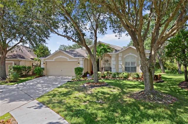 8503 Goldfinch Court, Tampa, FL 33647 (MLS #T3200185) :: Team Bohannon Keller Williams, Tampa Properties