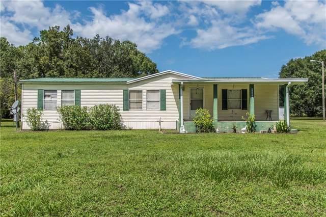 33605 Betts Drive, Wesley Chapel, FL 33543 (MLS #T3200207) :: The Brenda Wade Team