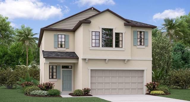 8949 Flourish Drive, Land O Lakes, FL 34637 (MLS #T3200263) :: Ideal Florida Real Estate