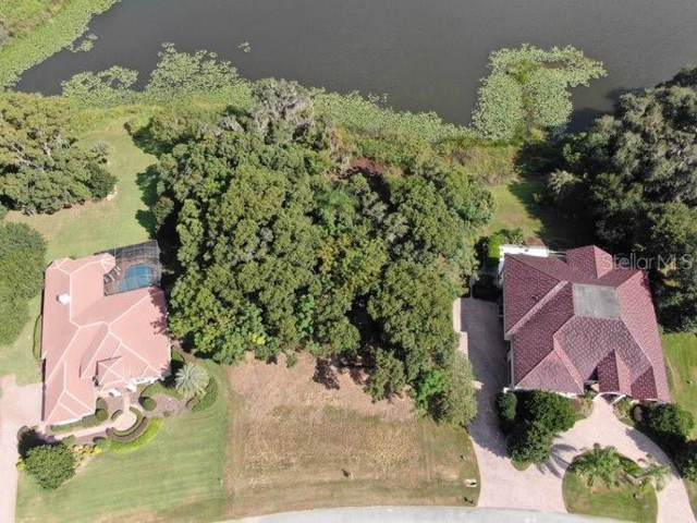 12850 Ventana Court, Dade City, FL 33525 (MLS #T3200275) :: The Nathan Bangs Group