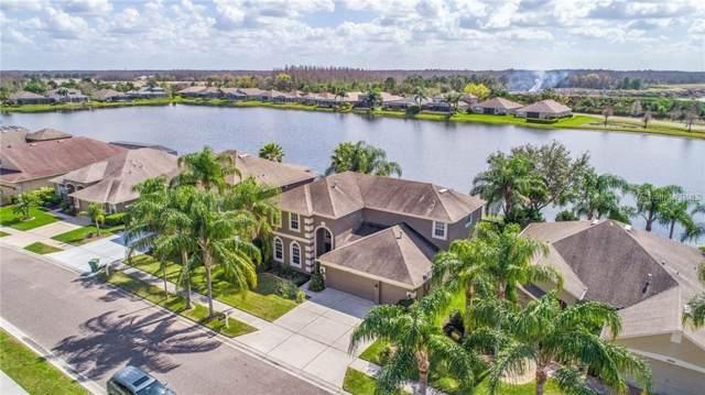 16212 Rambling Road, Odessa, FL 33556 (MLS #T3200294) :: Ideal Florida Real Estate