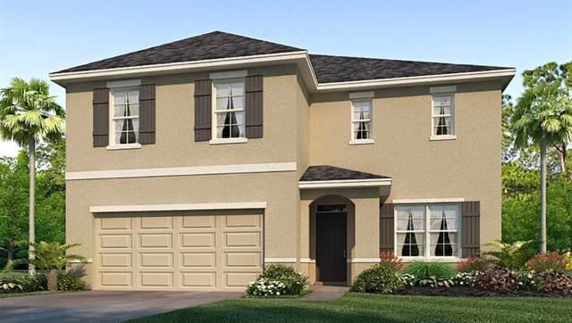 16439 Little Garden Drive, Wimauma, FL 33598 (MLS #T3200334) :: The Duncan Duo Team