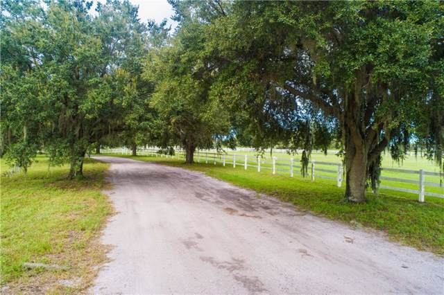 19146 Huckavalle Road, Odessa, FL 33556 (MLS #T3200381) :: Team Bohannon Keller Williams, Tampa Properties