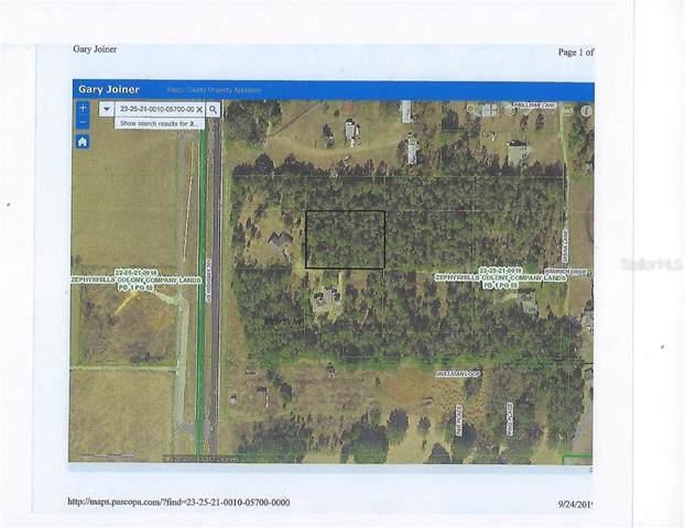 Hamrich Road, Dade City, FL 33525 (MLS #T3200626) :: NewHomePrograms.com LLC
