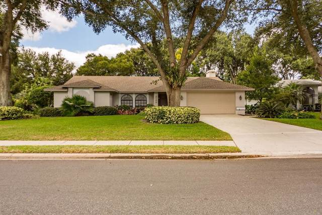 2199 Malachite Drive, Lakeland, FL 33810 (MLS #T3200726) :: Griffin Group