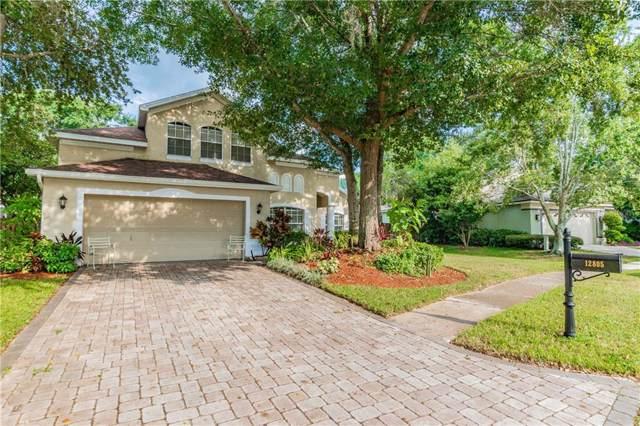 12805 Miramar Place, Tampa, FL 33625 (MLS #T3200746) :: Team Bohannon Keller Williams, Tampa Properties
