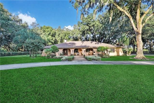 3101 N Wilder Road, Plant City, FL 33563 (MLS #T3200803) :: Cartwright Realty